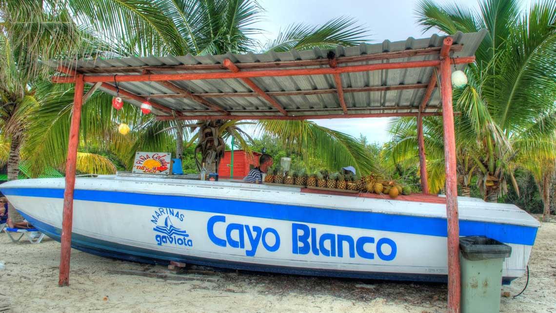 Foto de Catamaran y delfines a Cayo Blanco desde Varadero