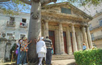 Ceiba del Templete